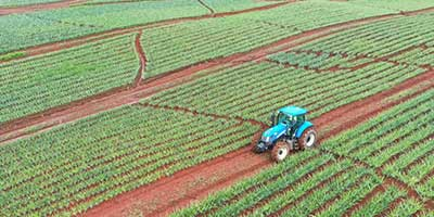 Your land managed by your farm management partner