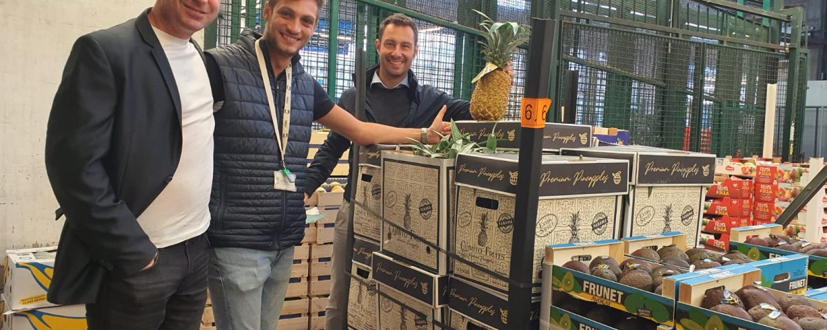 Caimito Fruits pineapples at wholesale fruit & vegetable market in Italy